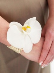 Pure White Orchid and Pearl Wrist Corsage